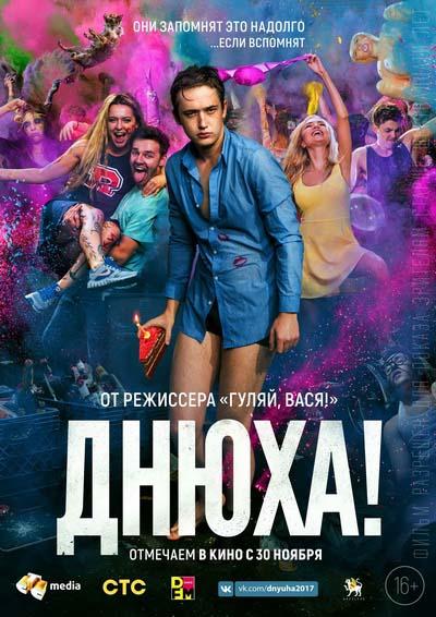 Днюха (2017) постер