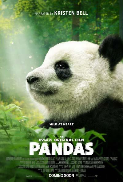 Панды (2018) постер