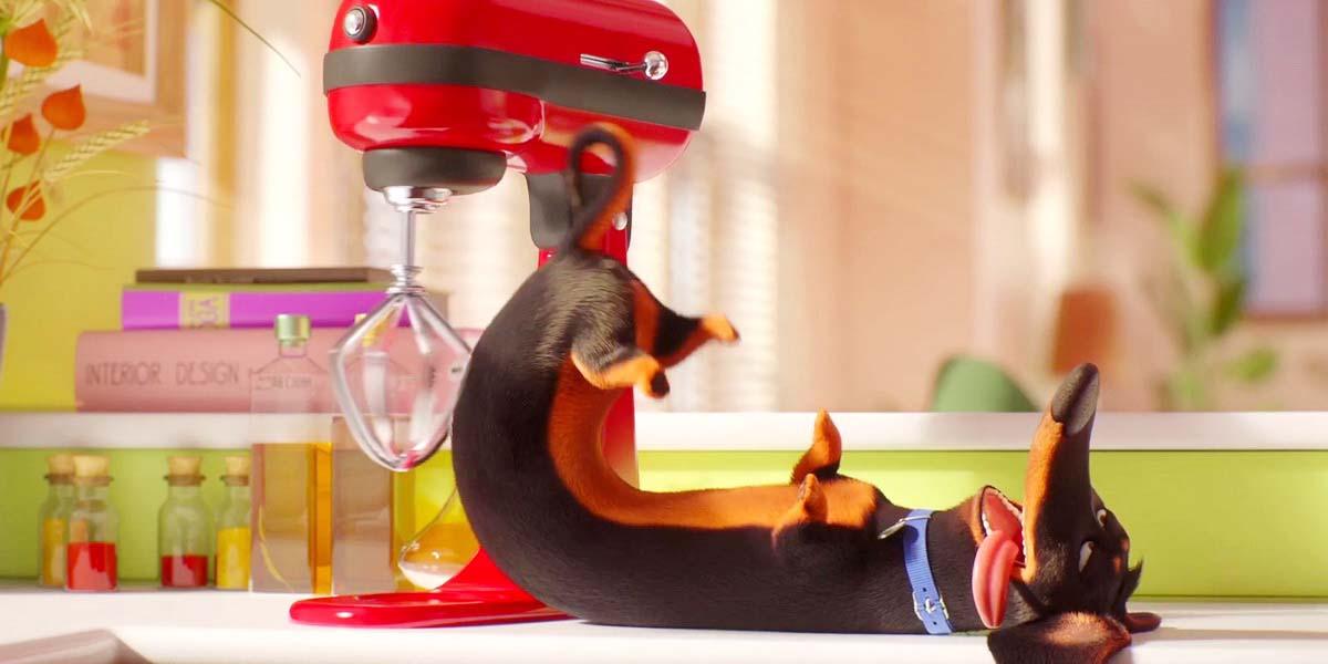 """Мультфильм """"Тайная жизнь домашних животных 2"""" (2019) - Русский трейлер 5 Постер"""