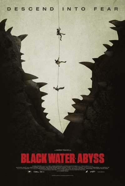 Тёмная бездна (2020) постер