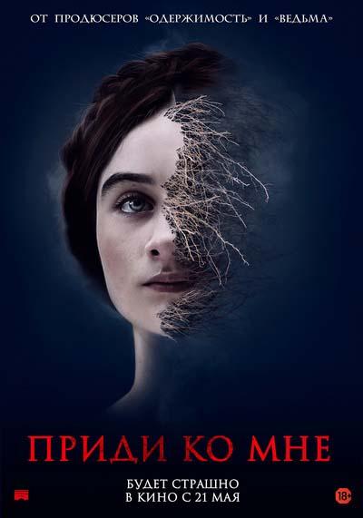 Приди ко мне (2020) постер